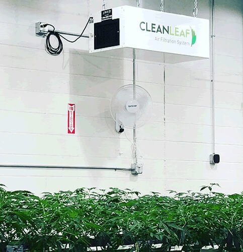 CleanLeaf air scrubber suspended from the ceiling in a growing facility.
